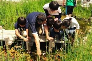 20150707京都水族館
