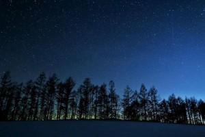 30160901宇宙の森フェス