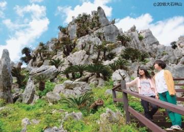 20180302沖縄石の文化博物館