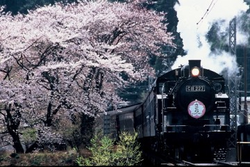 20180307大井川鐡道